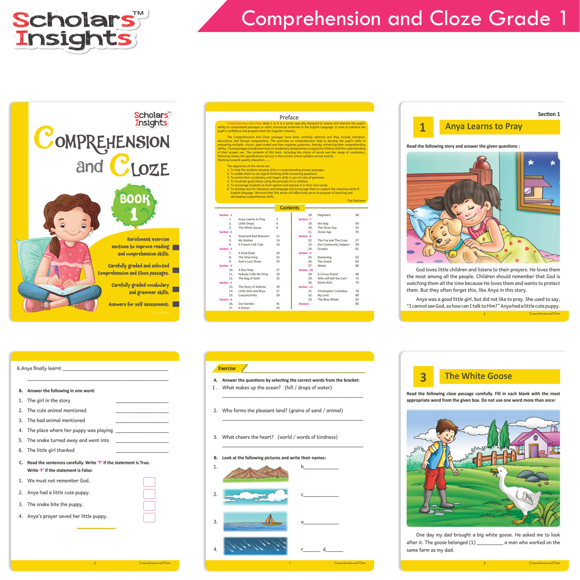Scholars Insights Comprehension and Cloze Grade 1 3 1
